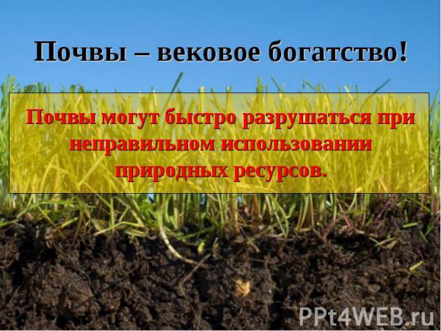 Почвы – вековое богатство!