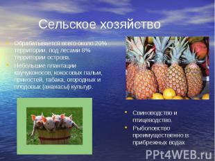 Сельское хозяйство Обрабатывается всего около 20% территории, под лесами 8% терр