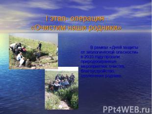 В рамках «Дней защиты от экологической опасности» в 2010 году прошли природоохра