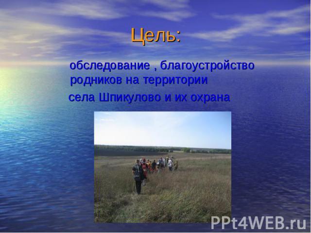 обследование , благоустройство родников на территории обследование , благоустройство родников на территории села Шпикулово и их охрана