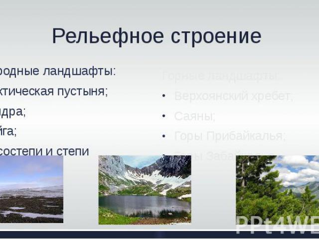 Рельефное строение Природные ландшафты: Арктическая пустыня; Тундра; Тайга; Лесостепи и степи