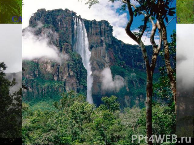 САМЫЙ ВЫСОКИЙ ВМИРЕ ВОДОПАД: Анхель (водопад Ангелов), Венесуэла, 979м (3212футов)