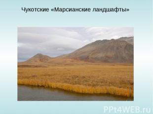 Чукотские «Марсианские ландшафты»