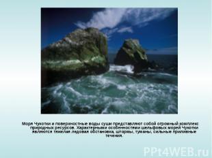 Моря Чукотки и поверхностные воды суши представляют собой огромный комплекс прир