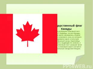 Государственный флаг Канады На нем изображен кленовый лист. Почему? Индейцы, на