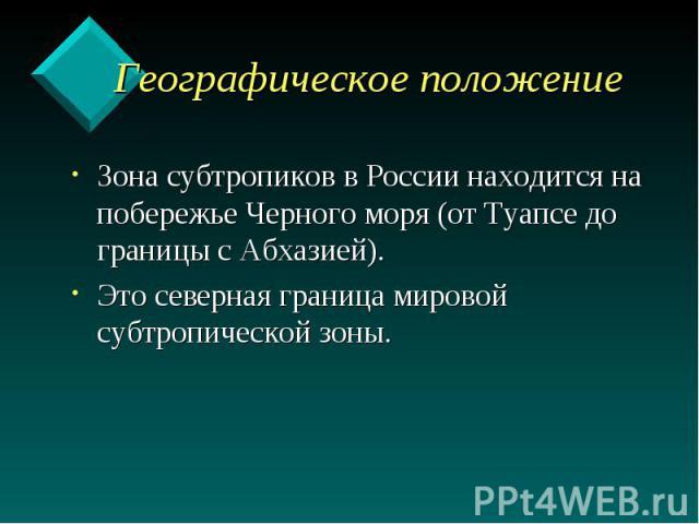 Географическое положение Зона субтропиков в России находится на побережье Черного моря (от Туапсе до границы с Абхазией). Это северная граница мировой субтропической зоны.