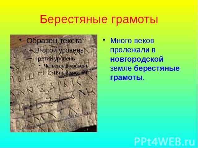 Берестяные грамоты Много веков пролежали в новгородской земле берестяные грамоты.