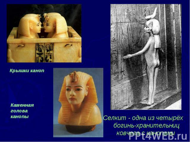 Селкит - одна из четырёх богинь-хранительниц ковчега с канопами Селкит - одна из четырёх богинь-хранительниц ковчега с канопами