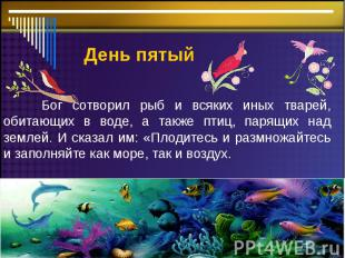 День пятый Бог сотворил рыб и всяких иных тварей, обитающих в воде, а также птиц
