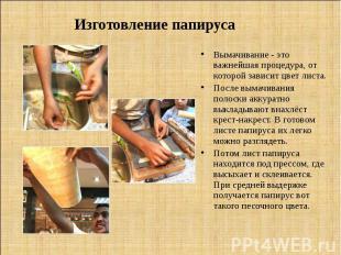 Изготовление папируса Вымачивание - это важнейшая процедура, от которой зависит