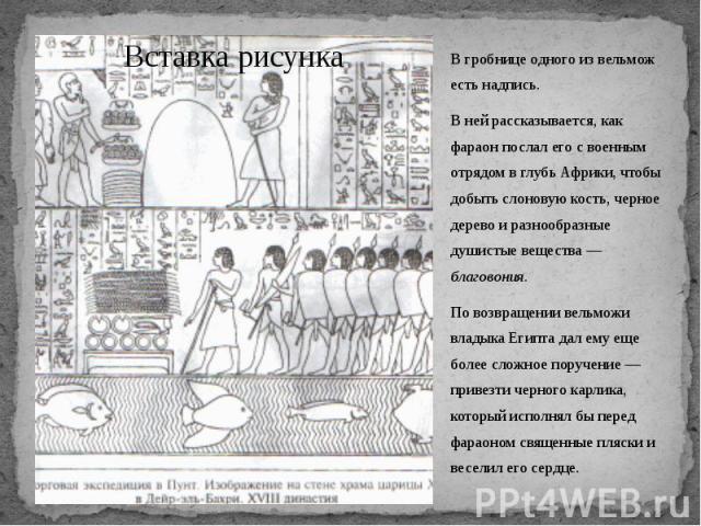 В гробнице одного из вельмож есть надпись. В гробнице одного из вельмож есть надпись. В ней рассказывается, как фараон послал его с военным отрядом в глубь Африки, чтобы добыть слоновую кость, черное дерево и разнообразные душистые вещества — благов…