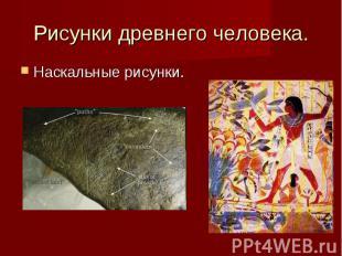 Рисунки древнего человека. Наскальные рисунки.