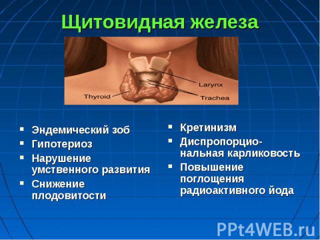 Щитовидная железа Эндемический зоб Гипотериоз Нарушение умственного развития Снижение плодовитости