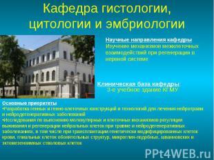 Клиническая база кафедры: 3-е учебное здание КГМУ Клиническая база кафедры