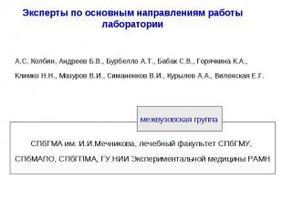 Эксперты по основным направлениям работы лаборатории А.С. Колбин, Андреев Б.В.,