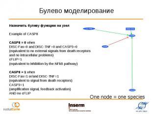 Назначить булеву функцию на узел Назначить булеву функцию на узел Example of CAS