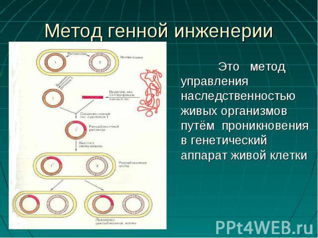 Это метод управления наследственностью живых организмов путём проникновения в генетический аппарат живой клетки Это метод управления наследственностью живых организмов путём проникновения в генетический аппарат живой клетки