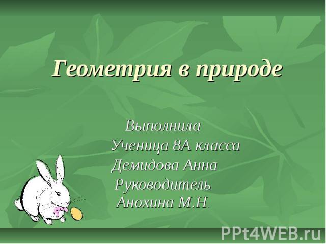 Геометрия в природе Выполнила Ученица 8А класса Демидова Анна Руководитель Анохина М.Н.