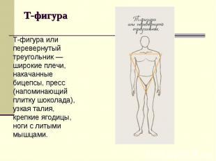 Т-фигура или перевернутый треугольник — широкие плечи, накачанные бицепсы, пресс