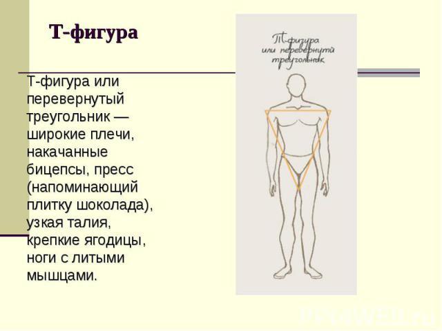 Т-фигура или перевернутый треугольник — широкие плечи, накачанные бицепсы, пресс (напоминающий плитку шоколада), узкая талия, крепкие ягодицы, ноги с литыми мышцами. Т-фигура или перевернутый треугольник — широкие плечи, накачанные бицепсы, пресс (н…