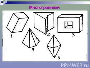 Многогранники Многогранник – тело, поверхность которого состоит из конечного чис