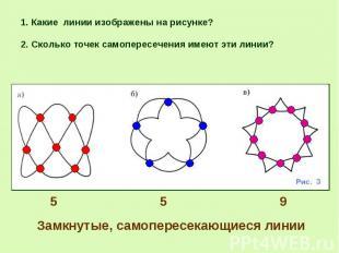 2. Сколько точек самопересечения имеют эти линии? 2. Сколько точек самопересечен