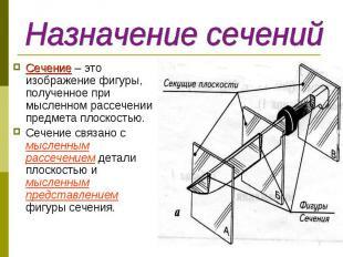 Сечение – это изображение фигуры, полученное при мысленном рассечении предмета п