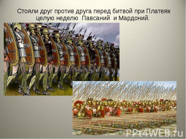 Стояли друг против друга перед битвой при Платеях целую неделю Павсаний и Мардоний. Стояли друг против друга перед битвой при Платеях целую неделю Павсаний и Мардоний.