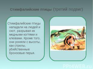 Стимфалийские птицы (третий подвиг) Стимфалийские птицы нападали на людей и скот