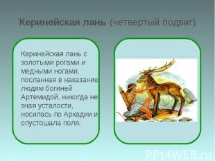 Керинейская лань (четвертый подвиг) Керинейская лань с золотыми рогами и медными