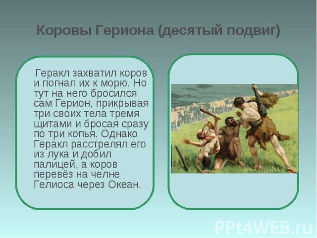 Коровы Гериона (десятый подвиг) Геракл захватил коров и погнал их к морю. Но тут на него бросился сам Герион, прикрывая три своих тела тремя щитами и бросая сразу по три копья. Однако Геракл расстрелял его из лука и добил палицей, а коров перевёз на…