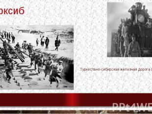 турксиб Туркестано-сибирская железная дорога (1929)