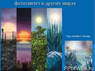 фотосинтез в других мирах
