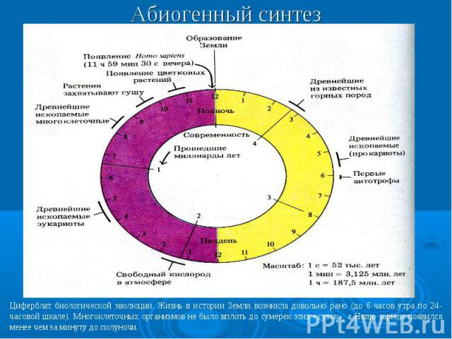 Абиогенный синтез