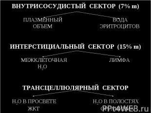 ВНУТРИСОСУДИСТЫЙ СЕКТОР (7% m) ПЛАЗМЕННЫЙ ВОДА ОБЪЕМ ЭРИТРОЦИТОВ ИНТЕРСТИЦИАЛЬНЫ