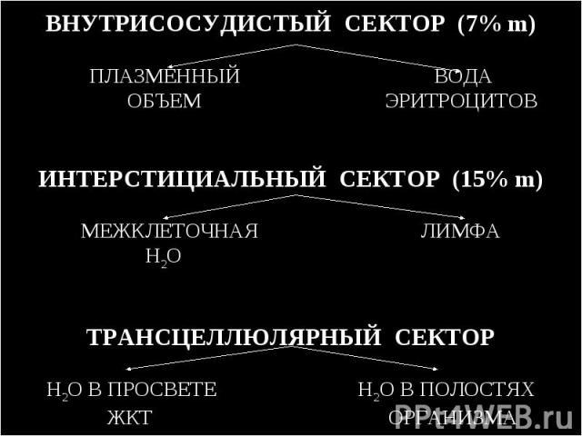 ВНУТРИСОСУДИСТЫЙ СЕКТОР (7% m) ПЛАЗМЕННЫЙ ВОДА ОБЪЕМ ЭРИТРОЦИТОВ ИНТЕРСТИЦИАЛЬНЫЙ СЕКТОР (15% m) МЕЖКЛЕТОЧНАЯ ЛИМФА H2O ТРАНСЦЕЛЛЮЛЯРНЫЙ СЕКТОР H2O В ПРОСВЕТЕ H2O В ПОЛОСТЯХ ЖКТ ОРГАНИЗМА