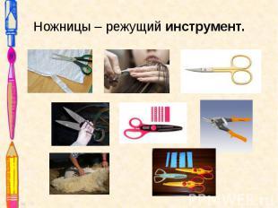 Ножницы – режущий инструмент.
