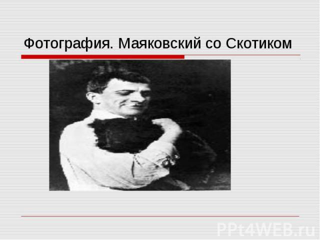 Фотография. Маяковский со Скотиком