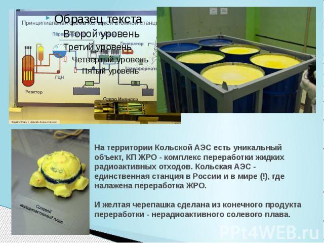 На территории Кольской АЭС есть уникальный объект, КП ЖРО - комплекс переработки жидких радиоактивных отходов. Кольская АЭС - единственная станция в России и в мире (!), где налажена переработка ЖРО. И желтая черепашка сделана из конечного продукта …