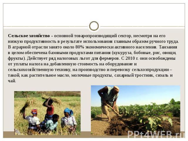 Сельское хозяйство- основной товаропроизводящий сектор, несмотря на его низкую продуктивность в результате использования главным образом ручного труда. В аграрной отрасли занято около 80% экономически активного населения. Танзания в целом обес…