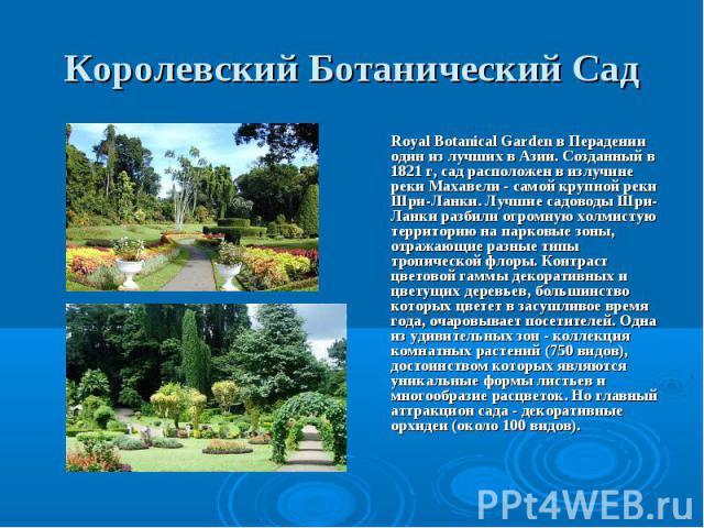 Royal Botanical Garden в Перадении один из лучших в Азии. Созданный в 1821 г, сад расположен в излучине реки Махавели - самой крупной реки Шри-Ланки. Лучшие садоводы Шри-Ланки разбили огромную холмистую территорию на парковые зоны, отражающие разные…