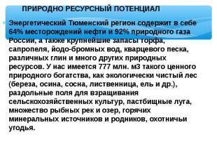 Энергетический Тюменский регион содержит в себе 64% месторождений нефти и 92% пр