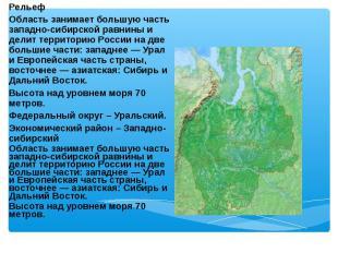 Рельеф Рельеф Область занимает большую часть западно-сибирской равнины и делит т