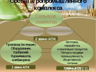 Состав агропромышленного комплекса