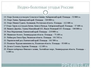 14. Озеро Болонь и устья рек Сельгон и Симми, Хабаровский край. Площадь – 53 800