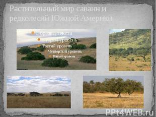 Растительный мир саванн и редколесий Южной Америки