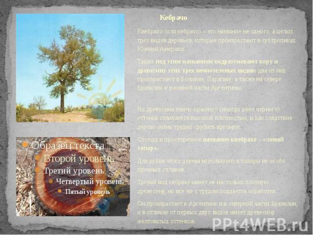 Кебрачо Квебрахо (или кебрачо) – это название не одного, а целых трех видов деревьев, которые произрастают в субтропиках Южной Америки. Такжепод этим названием подразумевают кору и древесину этих трех вечнозеленых видов:два из них произр…