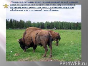 Токсовский питомник является самой северной точкой мира, где живут эти удивитель