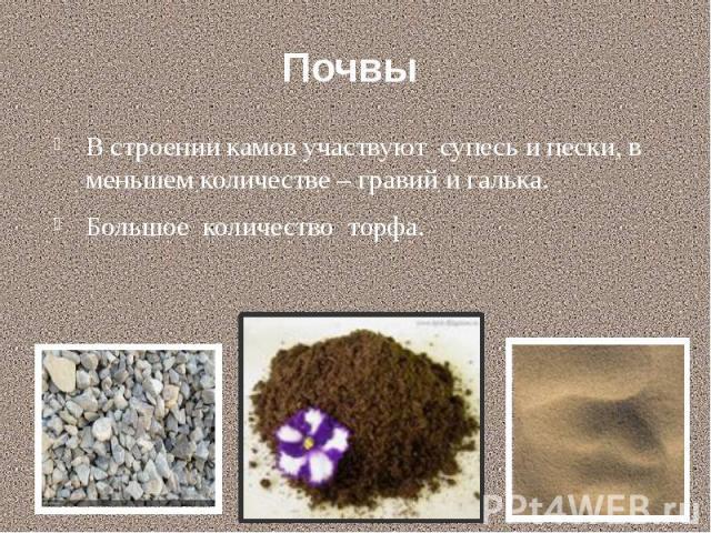Почвы В строении камов участвуют супесь и пески, в меньшем количестве – гравий и галька. Большое количество торфа.