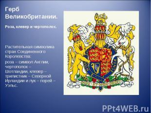 Растительная символика стран Соединенного Королевства: Растительная символика ст